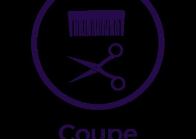 oscar-oscar-icon-coupe