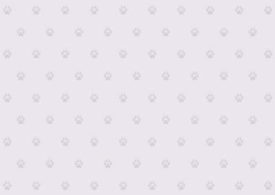 oscar-oscar-motifs-empreinte-de-chien