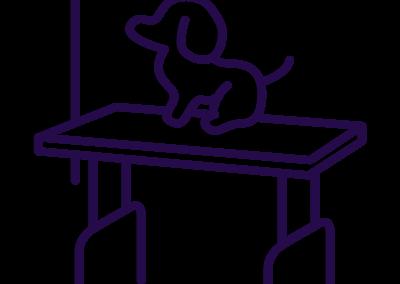 oscar-oscar-icon-table-de-toilettage